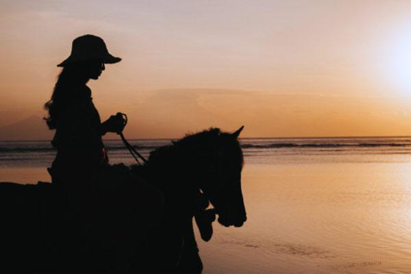 Rutas y paseos a caballo