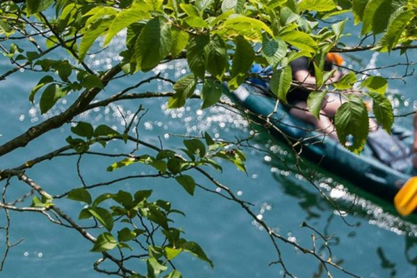 Consejo: disfrutar paisaje del río